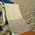 Beach Towels????