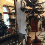 Christmas trees at reception