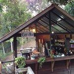 Cafe and Bar  池に浮かぶロングハウスやジャングルを見ながらお食事します。