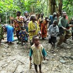 Bwindi Forest Pygmies
