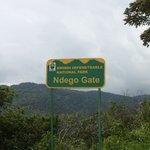 Bwindi Forest from Ndego III