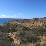 View from Torrey Pines State Reserve Trail