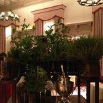 Le plateau de tisanes ... des herbes fraiches ! ^_^