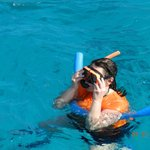 Snorkling with sea turtles