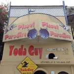 Yoda Guy