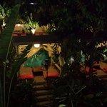 La plantation de nuit !!