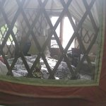 Peeking into Yurt