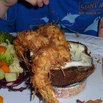 Coconut shrimp (partially eaten)...yum!!!