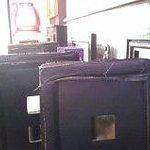 panini chairs