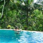 """La piscine donnant sur la """"jungle"""""""