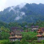 Au loin, se détache la brume de la jungle et d'autres hôtels