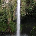 Nearby La Fortuna Waterfall