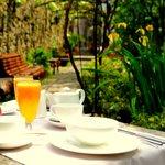 Desayuno jardín