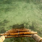 Ladder to the ocean