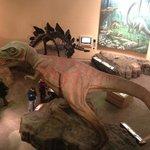 Visão da ala dos dinossauros