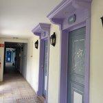 Разноцветные входные двери