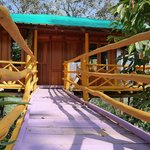 tree house with pink boardwalk - quirky!
