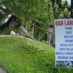 Il nostro bar vicino al bosco