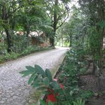 Walk way to Tikal