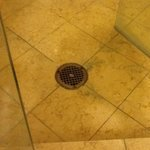 Shower Floor, Moldy and Dirty Grout