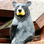 The Big Bear who greets visitors when they arrive