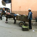Outside, a contrast to the lavish meal we just enjoyed - a broken mule pulls a broken cart.