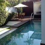 tropical oasis probate pool and garden