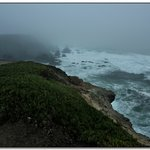 Bodega Bay II