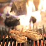 Fresh Wood-Fired Grilled Seafood