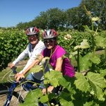 ‪Explore Marlborough Wine Tours‬