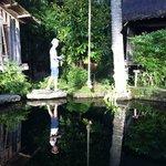Bambu Indah - Natural Pool