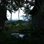 Bambu Indah - View from Udang House