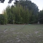 The volleyball net needs some TLC at Peach Tree
