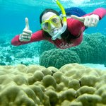 Snorkeling the pristine Marau water