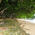 Conflict Bay Lodge beachfront