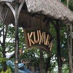 Welcome to Kuyaba