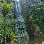 Karekare Falls, Le Trobe Track