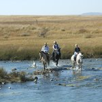 Fording the Bufalo River at Rorke's Drift