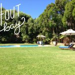 The pool/garden