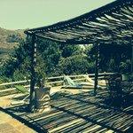 Angelica's terrace
