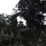 お庭からの五重塔
