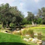 Herrlich angelegter Golfplatz