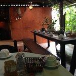 Desayunar en un ambiente acogedor rodeado de naturaleza