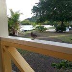 Sitting on the cottage veranda