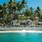 Palm tree bungalows