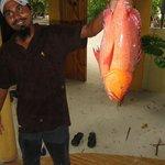 Nihad con la cernia dei coralli