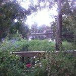 Palmetto's - outside view 4