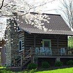 Cosby Cabin