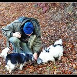 "Truffle hunting with ""truffle dogs"""