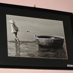 interesting photographs for sale